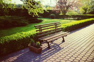 Garden maintenance Pembrokeshire