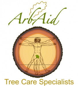 Tree Surgeon Pembrokeshire