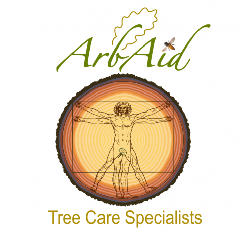 Tree Surgeon Pembrokeshire